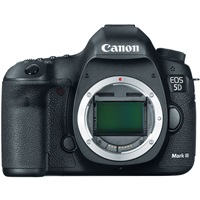 Canon EOS 5 Mark iii for rent on rent in Gurgaon, India