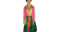 Fancy, Traditional & Theme Costumes For Rent in Bangalore on rent in Bangalore, India