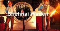 Punjabi Hindi Singer for Ladies Sangeet & Mehndi Delhi INDIA on rent in Delhi, India