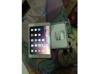 Apple iPad Mini 3 Gold(Wifi+3G) Hyderabad on rent in Hyderabad, India